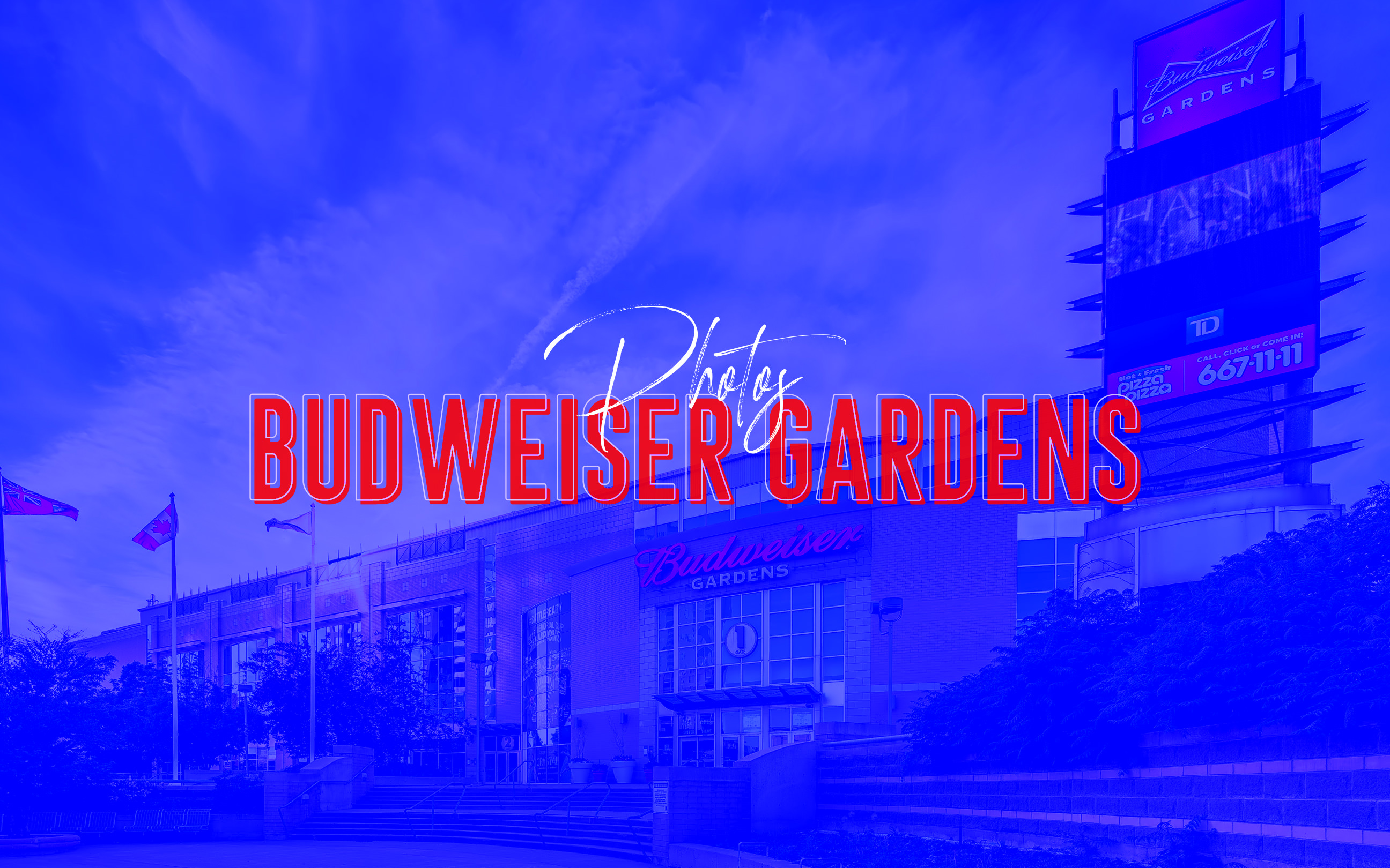 Budweiser Gardens London, Ontario Feature Image