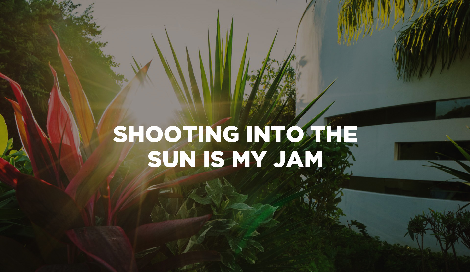 Shooting into the sun is my jam