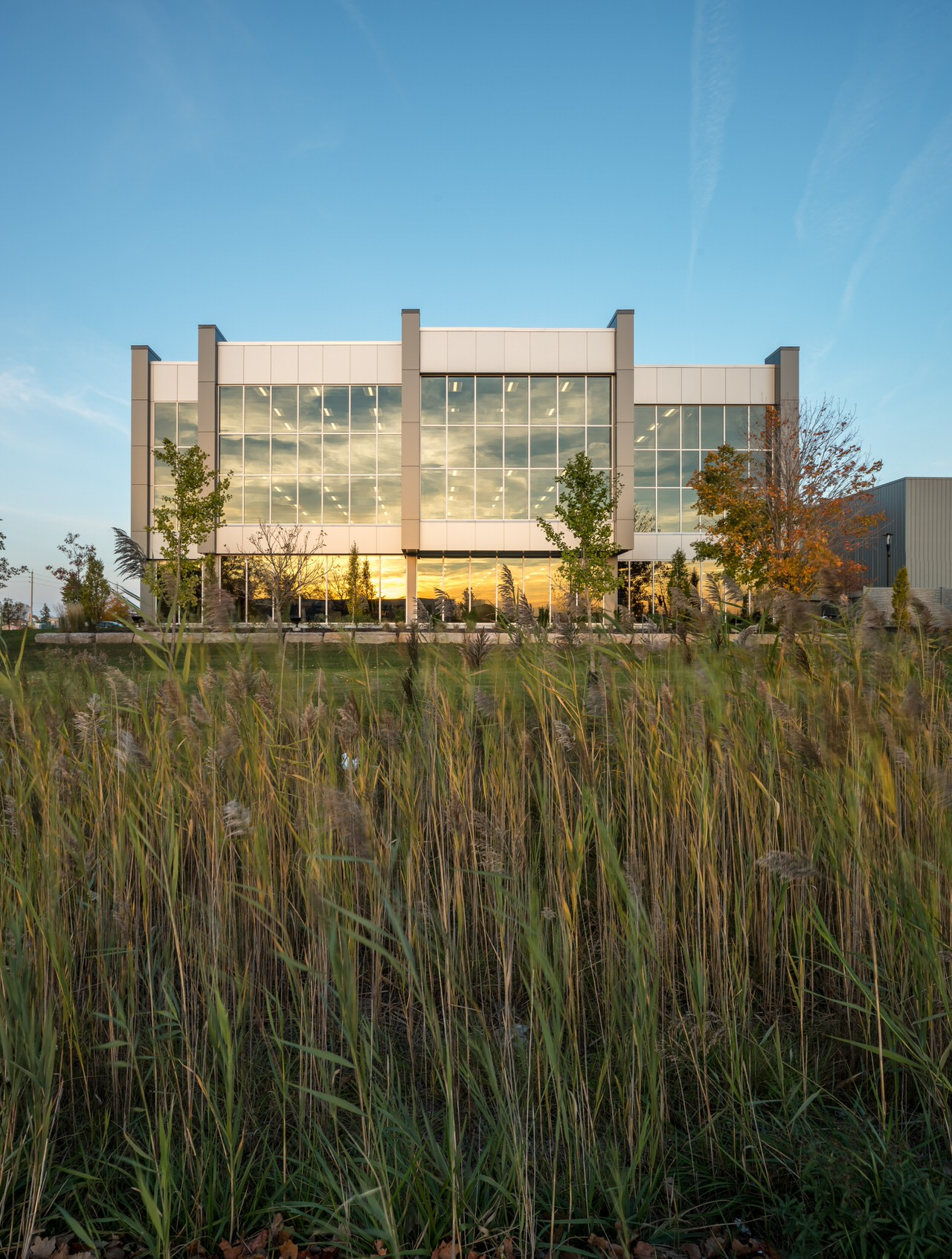 startech building modern architectural addition photo through grasses