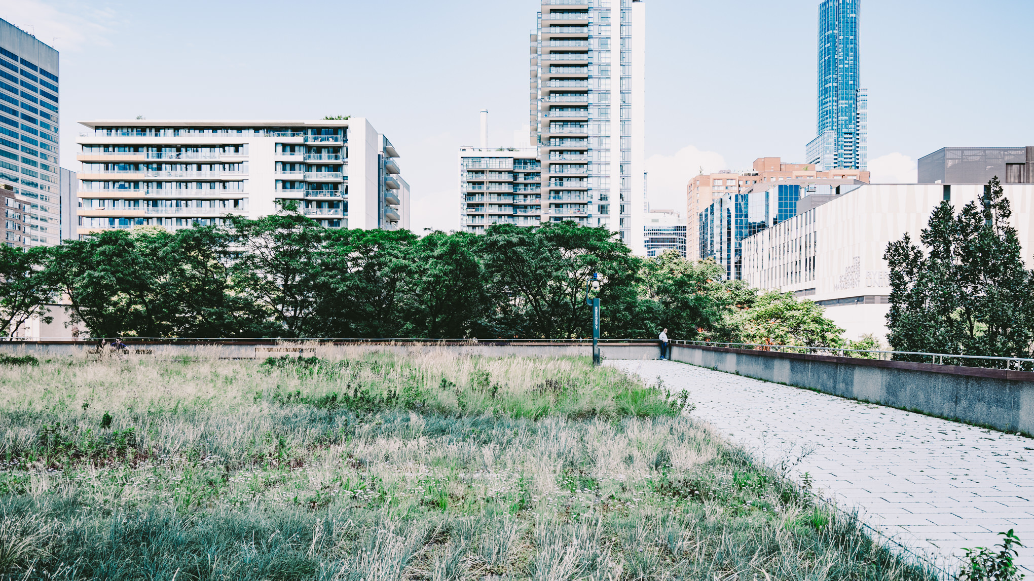 Experiencing the City Hall Green Roof Architecture in Photos by Scott