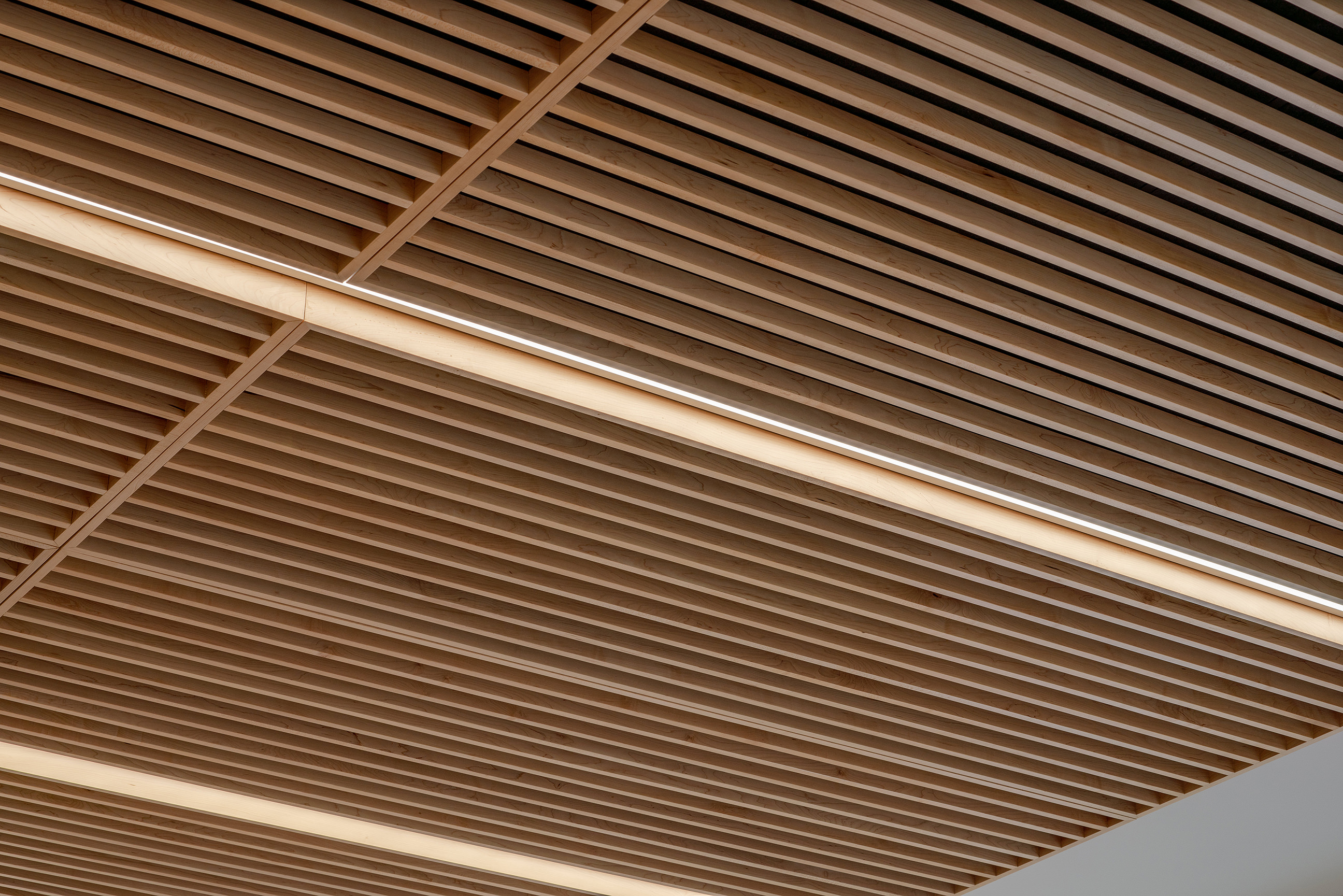 Ceiling detail photo within the Wind Tunnel building UWO